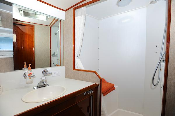 Mid ship stateroom head/shower