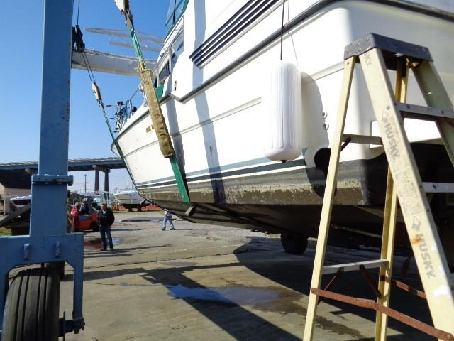 Sea Ray 440 Aft Cabin - Photo: #65