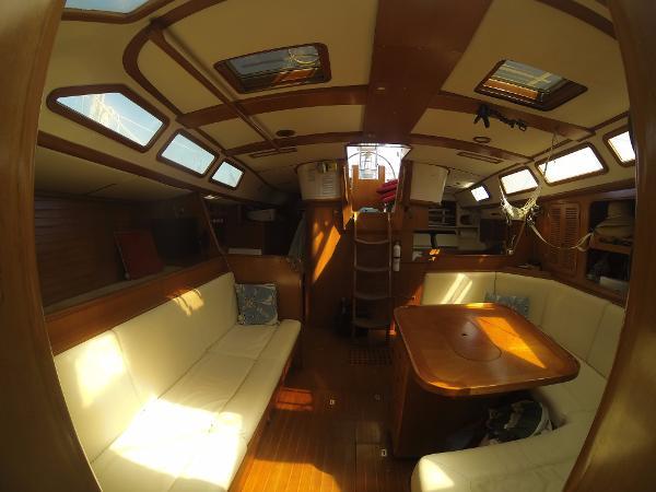 Ta Shing Orion 50 Purchase Rhode Island