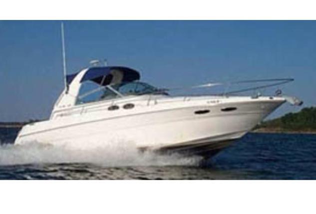 Sea Ray Sundancer 310