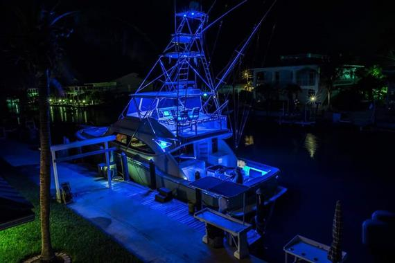 2006 63 Bertram- Blue Lights