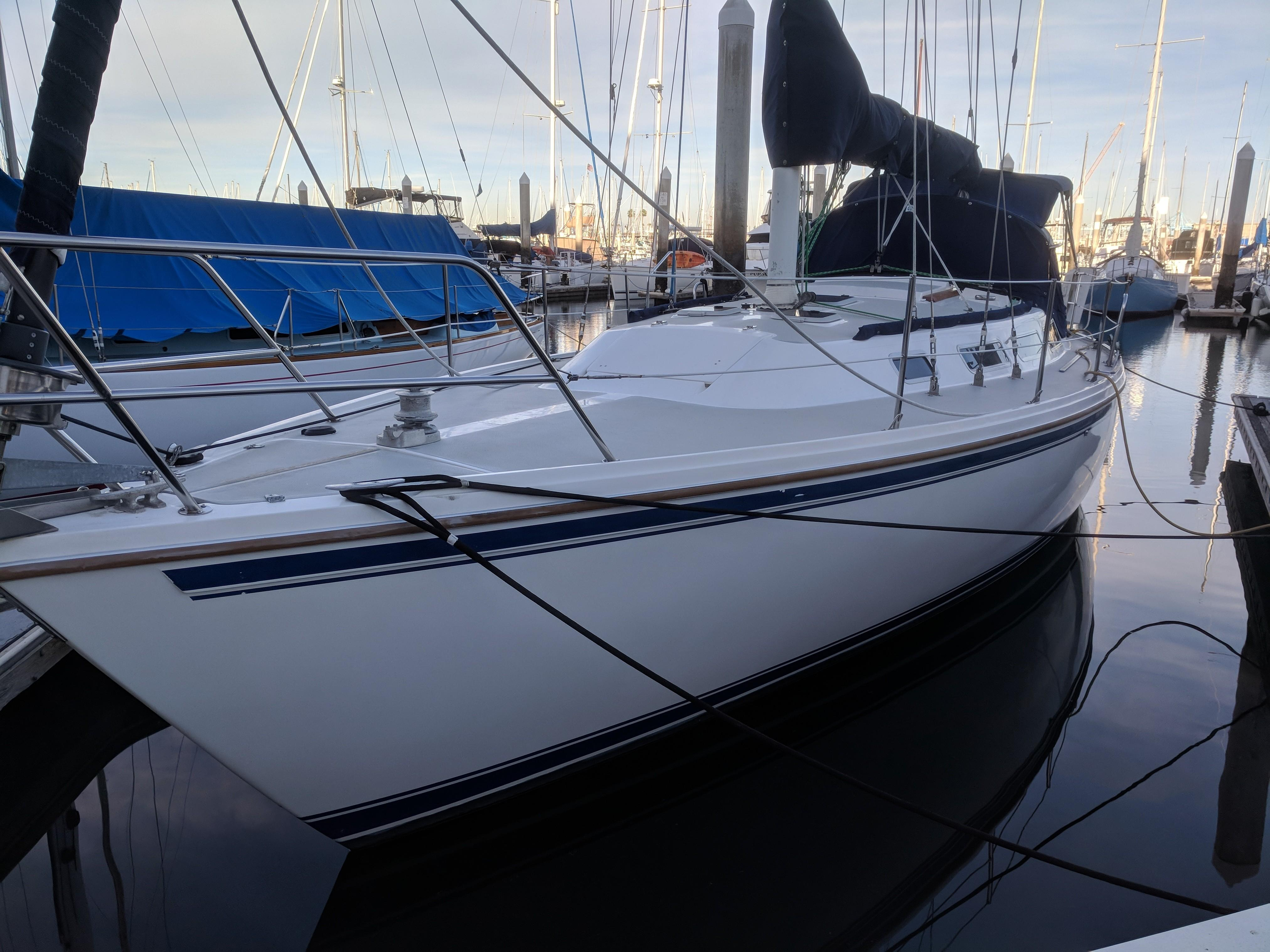 Catalina c36T
