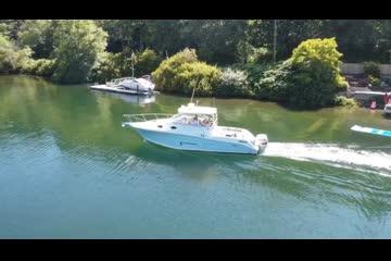 Seaswirl STRIPER video