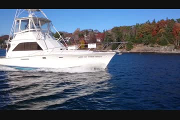 Ocean Yachts 42 Super Sport video