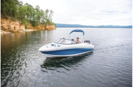 2019 Tahoe boat for sale, model of the boat is 450 TS & Image # 16 of 24