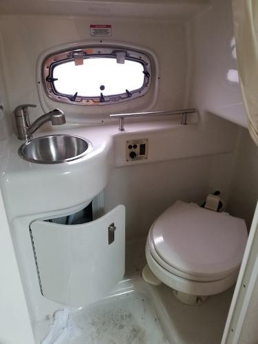 2010 Sea Ray boat for sale, model of the boat is 260 Sundancer & Image # 6 of 24