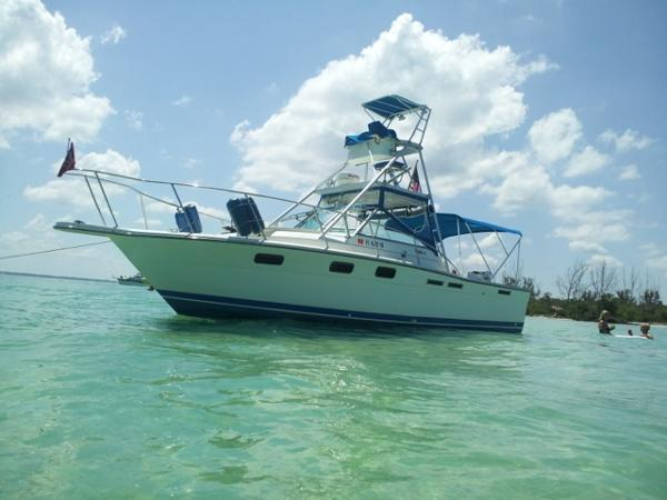 1988 27 Tiara 2700 Open Yacht For Sale The Hull Truth