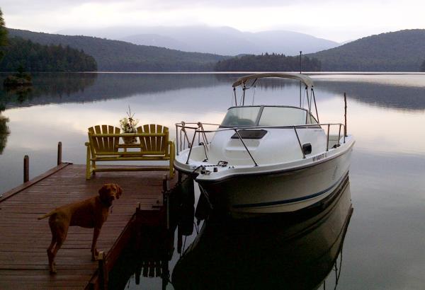 Bayliner 2052 Trophy Cuddy Cabin Listing Number: M-3840738