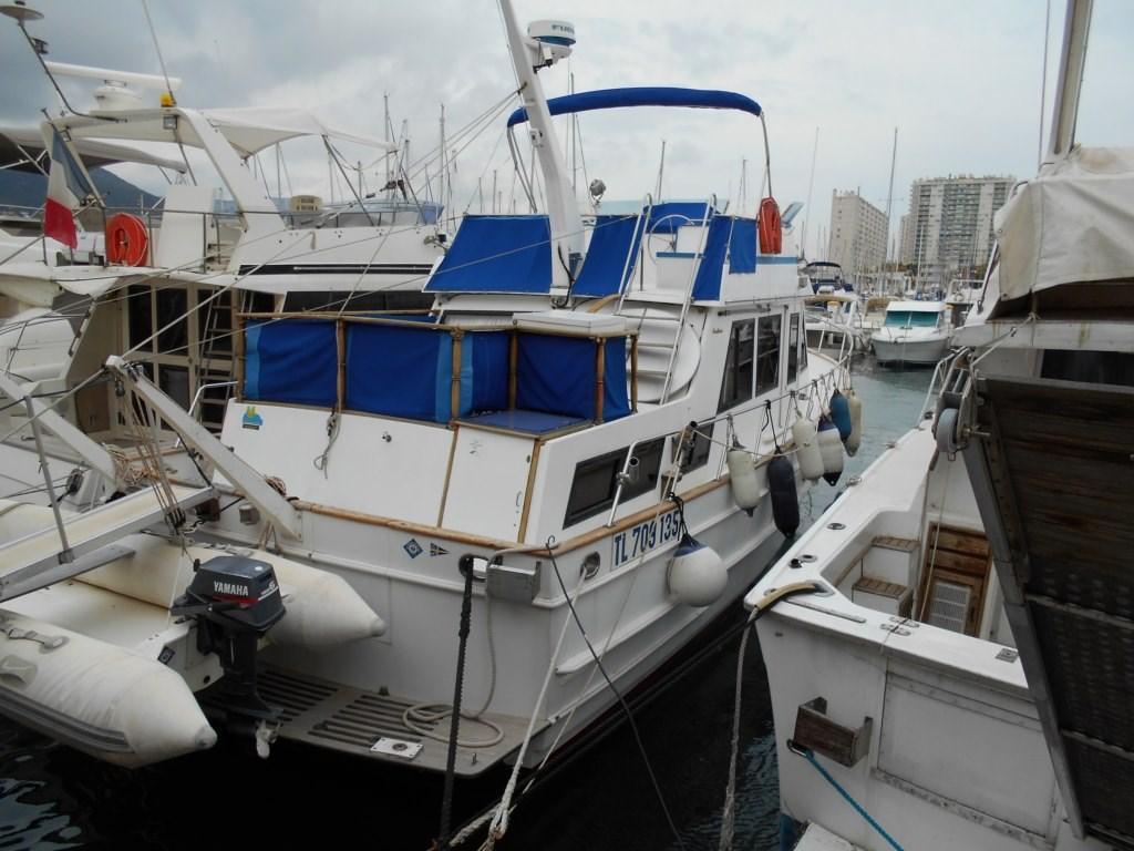 Ocean Alexander 38