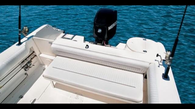 Boston Whaler210 Ventura