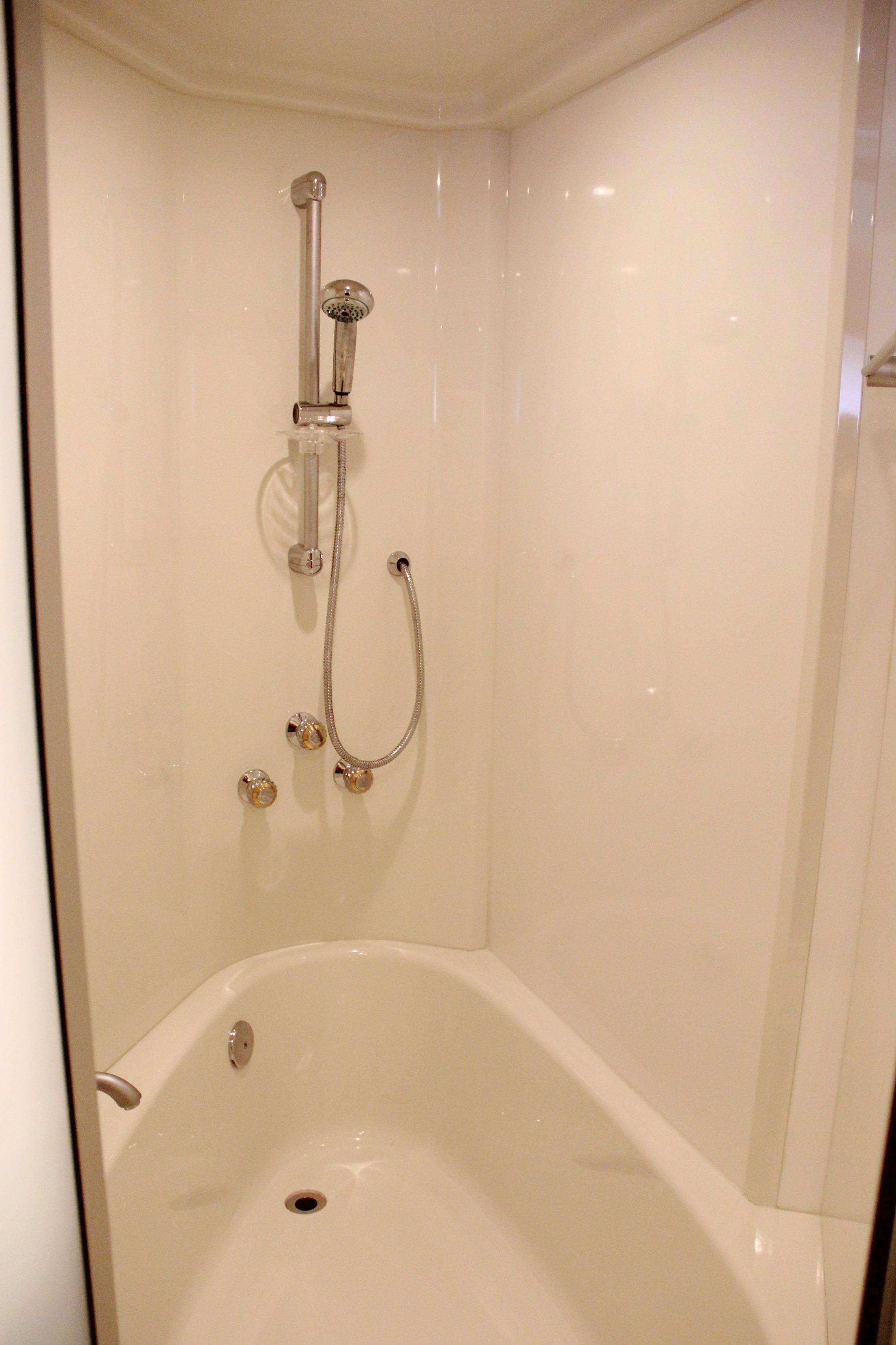 Master Stall Shower & Bathtub