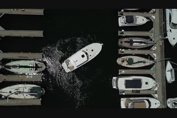 Back Cove 37 video