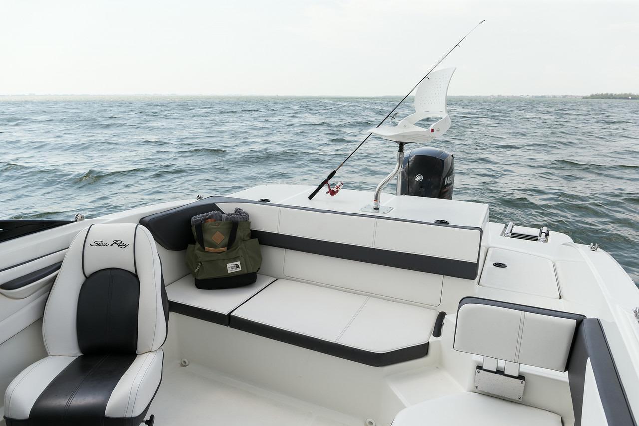 Sea Ray19 SPX OB