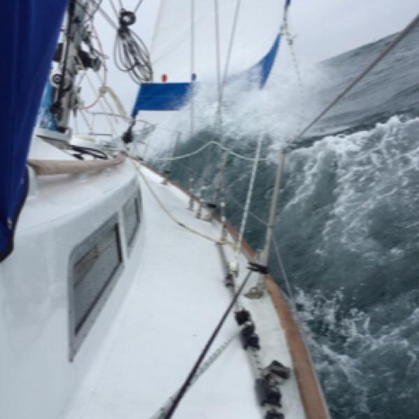 32' Rival, Listing Number 100855446, - Photo No. 7