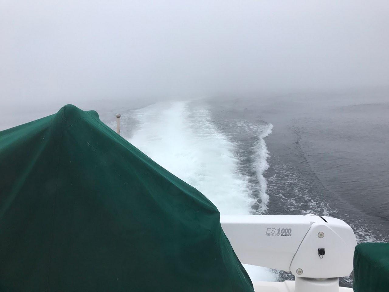 Wake Through the Fog