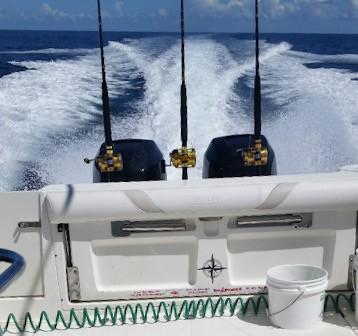 Boston Whaler 305 Conquest - Photo: #2