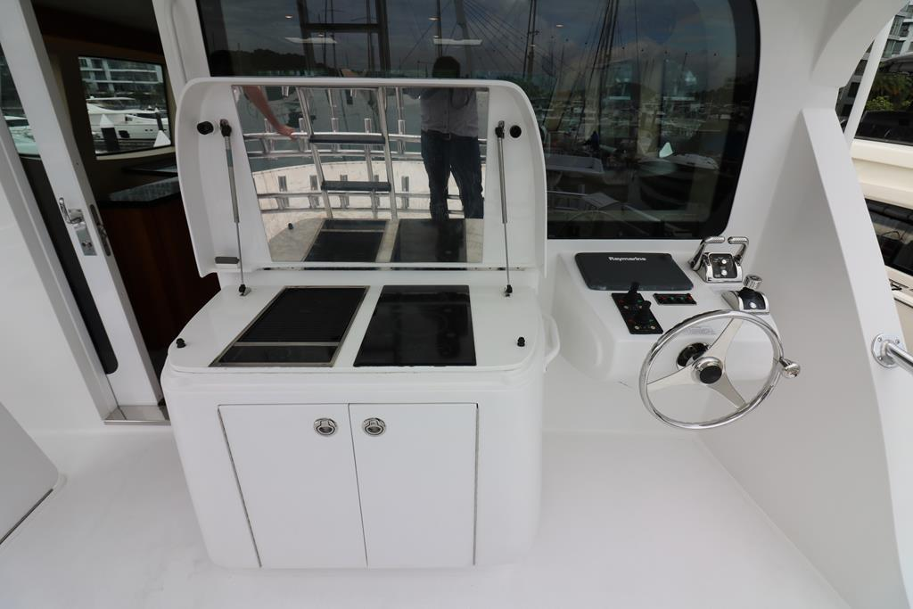 Grill and Cooktop on aft bridge