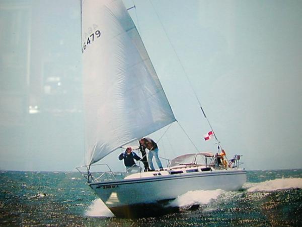 38' Catalina Sloop