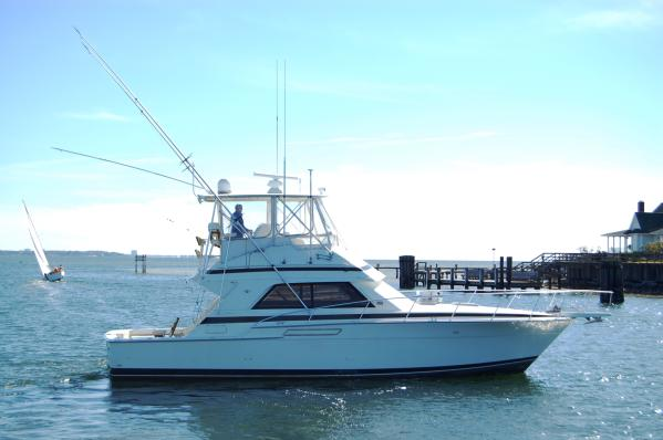 Bertram 43 Convertible Sports Fishing Boats. Listing Number: M-3579406