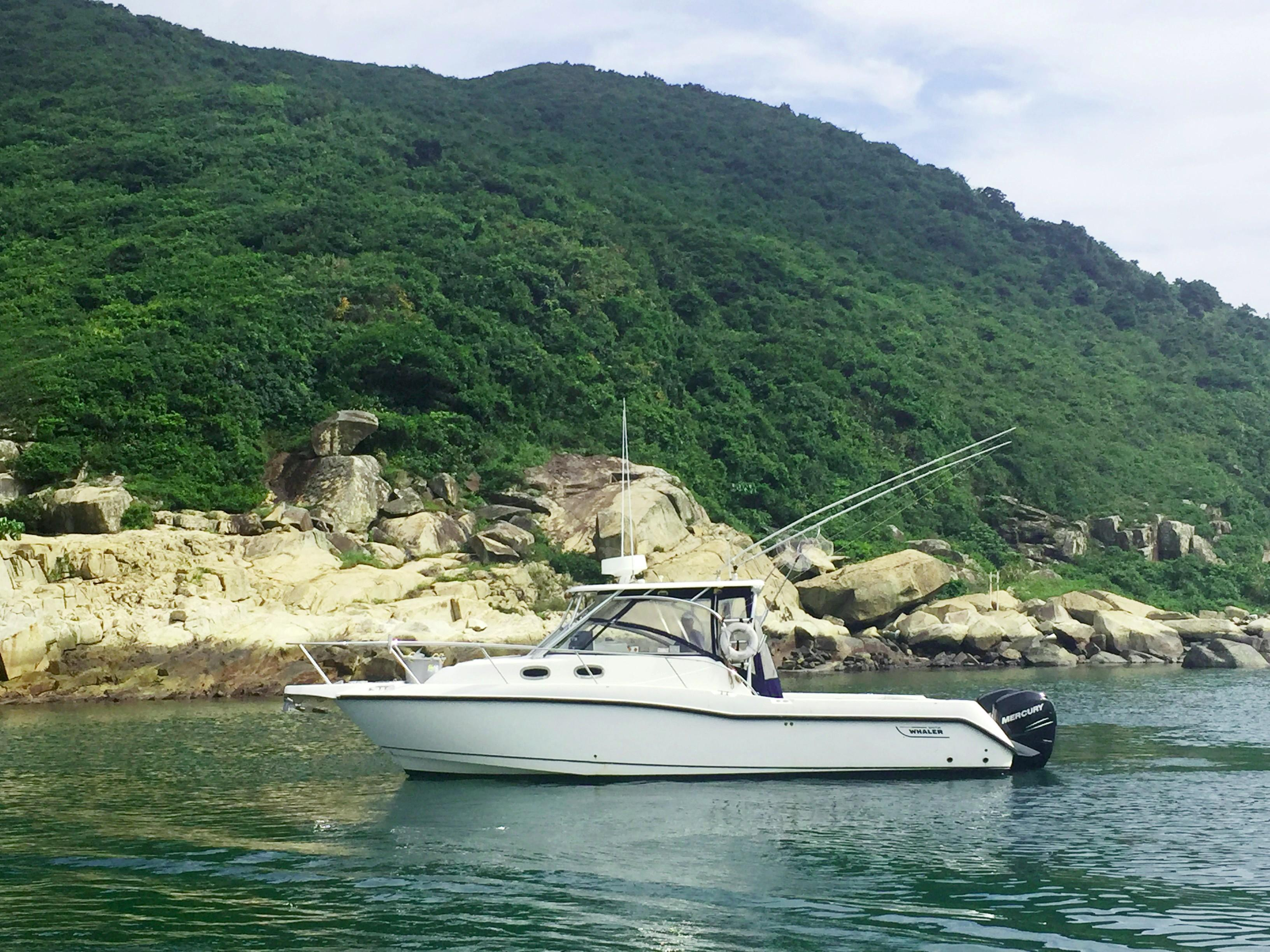 Boston Whaler 305 Conquest Motor Yacht - Simpson Marine