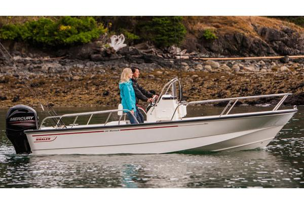 2015 Boston Whaler 190 Montauk